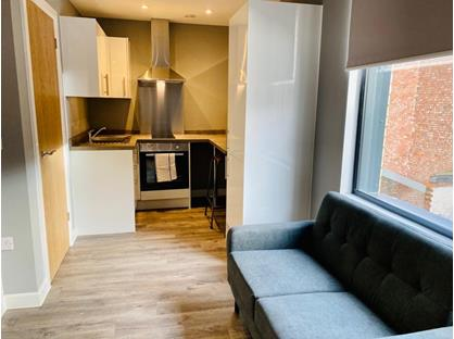 Studio Flat, Studio - Fully Furnished & All Bills, LE2
