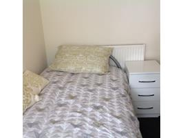 Quiet  Single Room Available Late January