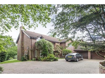 5 Bed Detached House, Drax Avenue, SW20