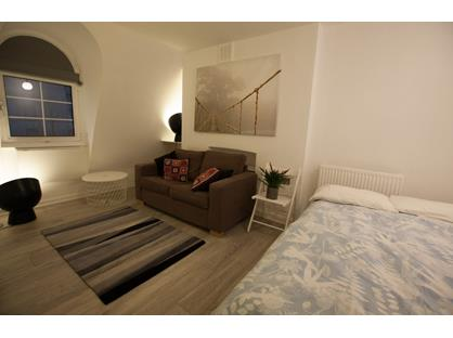 Studio Flat, Ebury Bridge Road, SW1W